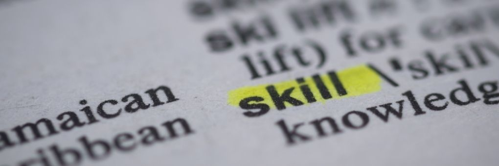 What is the Most Important Skill Set - Blog Top Image