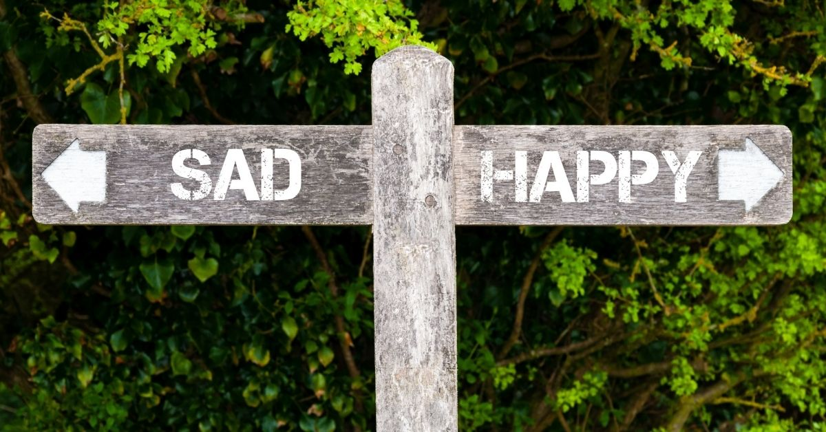 """Wooden sign outside in green sunshine area pointing arrow and word """"sad"""" to the left and arrow and word """"happy"""" to the right"""